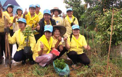 จิตอาสา อ.แจ้ห่ม ร่วมกันปลูกต้นไม้เฉลิมพระเกียรติฯ พัฒนาพื้นที่แหล่งท่องเที่ยวของชุมชน