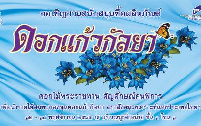"""12-14 พฤศจิกายน นี้ ขอเชิญอุดหนุน """"ดอกแก้วกัลยา""""  รายได้ช่วยเหลือคนพิการทั่วประเทศ"""