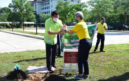 ผู้ว่าฯ ระนอง ปลูกต้นไม้เพื่อเพิ่มพื้นที่สีเขียว เนื่องในวันต้นไม้ประจำปีของชาติ พ.ศ.2563