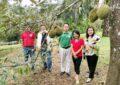 สวนลุงจี๊ดบ้านกระโสม อ.ตะกั่วทุ่ง แหล่งรวมทุเรียน 4 ภาคและสุดยอดทุเรียนพังงา