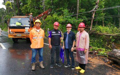 ต้นไม้ใหญ่โค่นล้มปิดถนนและทับเสาไฟฟ้าเสียหายเกือบ1กม.