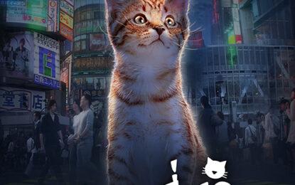 """น่าเอ็นดูที่สุด ต้องหยุดดู กับรายการ """"ท่องเที่ยวเมืองแมว"""" ทาสแมว ห้ามพลาดเสาร์ที่ 15 ส.ค.นี้ ทางช่อง 9"""