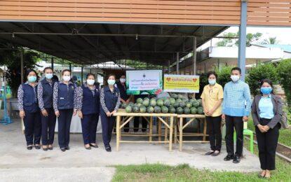"""จังหวัดสงขลาร่วมกับแม่บ้านมหาดไทย ช่วยเกษตรกรซื้อแตงโมระโนด """"ส่งสุข"""" ให้กับบุคลากรทางการแพทย์จังหวัดสงขลา ภายใต้กิจกรรม """"สงขลา ศุกร์ส่งสุข"""""""